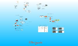Copy of PEDALUSP (20/06/2011)