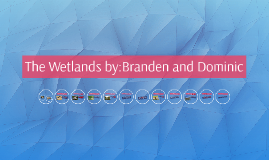 The Wetlands by:Branden and Dominic