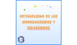 Metabolismo de los