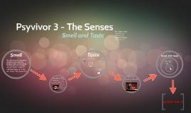 Psyvivor 3 - The Senses