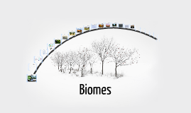 Copy of Biology Chapter 4 Section 3 Biomes