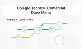 Colegio Tecnico  Comercial