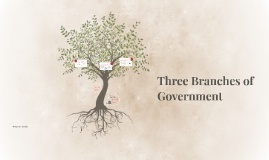 (1) Three Branches of Government