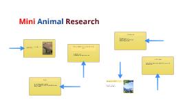 Mini Animal Research