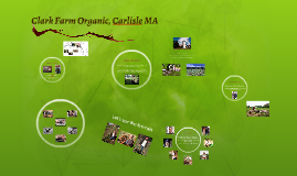 Clark Farm Organic, Carlisle MA