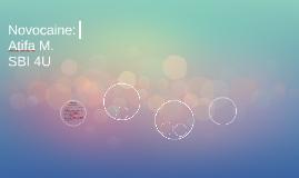 Molecules of Life: Novocaine