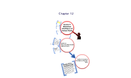 Biology Chapter 12