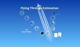 Flying Through Estimation