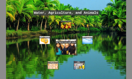 Water, Agriculture, and Animals
