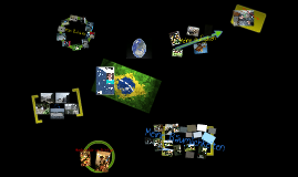 Joé Christilche Dienste Brasilien