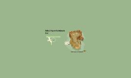 Trip to the Paleozoic Era 1