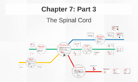Chapter 7: Part 3