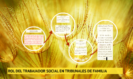 ROL DEL TRABAJADOR SOCIAL EN TRIBUNALES DE FAMILIA