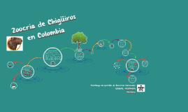 Zoocriaderos de Chigüiros