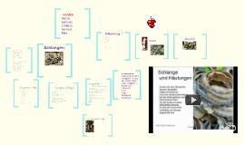 Copy of Schlangen