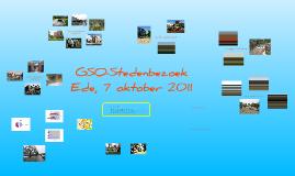 GSO stedenbezoek 7 okt 2011
