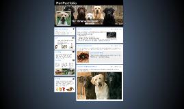Pet Portfolio