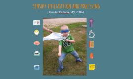 Sensory Integration and Processing