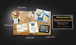 Dimensión Organizacional