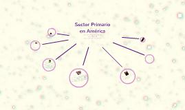 Sector  Primario en América