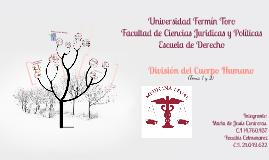 Universidad Fermin Toro