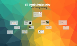 CUI Organizational Structure Overview