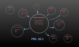 PBL 30.1