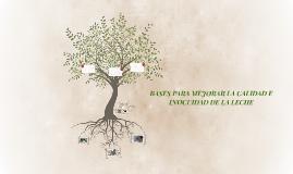 Copy of BASES PARA MEJORAR LA CALIDAD E INOCUIDAD DE LA LECHE