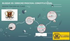 BLOQUE XII- DERECHO PROCESAL CONSTITUCIONAL