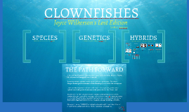 PART 3 - Hybrids - CLOWNFISH - Wilkerson's Lost Chapters