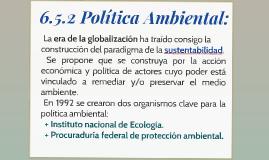 6.5.2 Política ambiental