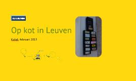 Op kot in Leuven (Kortrijk, 2015)