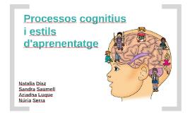 Processos cognitius i estils d'aprenentatge