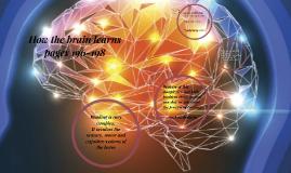 How the brain learns Ch.5