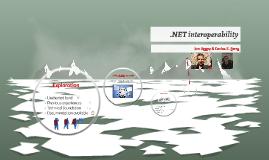 .NET interoperability