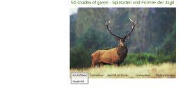 50 shades of green - Spielarten und Formen der Jagd