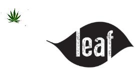 Concept - Leaf