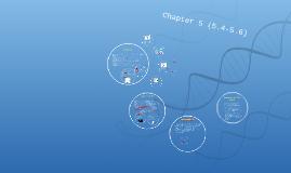 Campbell Bio Chap 5 (5.4-5.6)