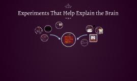 Experiments That Help Explain the Brain