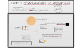Cadena epidemiologica Leishmaniasis