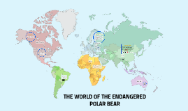 THE WORLD OF THE ENDANGERED POLAR BEAR
