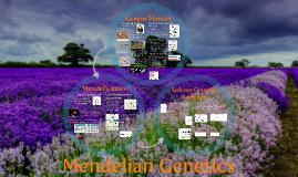 AP Bio- Mendelian Genetics 1:  Intro to Mendelian Genetics