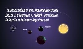 INTRODUCCIÓN A LA CULTURA ORGANIZACIONAL