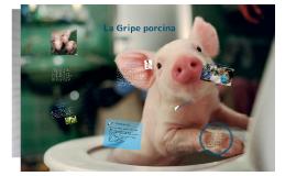 La Gripe porcina