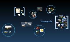 guatemala heather