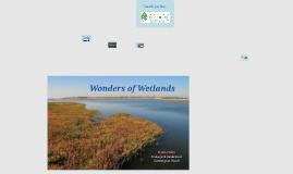 Wetlands 2nd  3rd