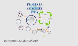Copy of C.I. GRANADA LTDA