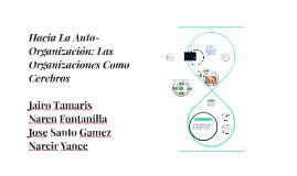 Copy of Hacias La Auto-Organización: Las Organizaciones Como Cerebro