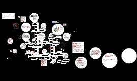 Copy of TRANSFORMACION DEL INDIVIDUO EN UN SER SOCIAL Y CONSTRUCCION