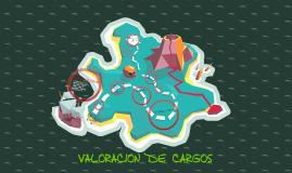Copy of VALORACION DE CARGOS